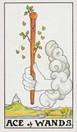 Ace of Wands  Universal Rider Waite